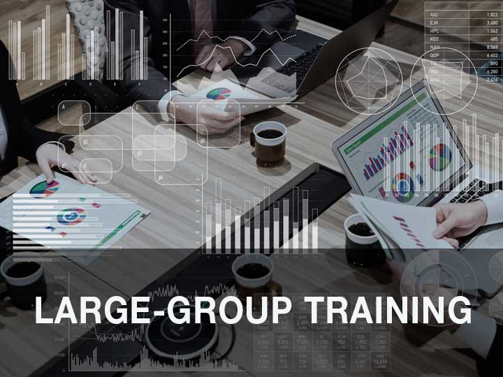 Large-Group Training
